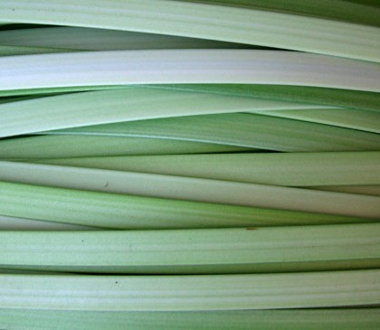 Mesclado Verde Claro